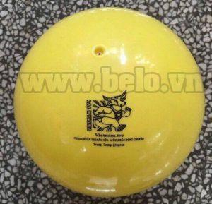 bong-chuyen-hoi-thang-long-250g-300x289